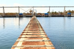 Grahamstown Wastewater Treatment Plant Plank